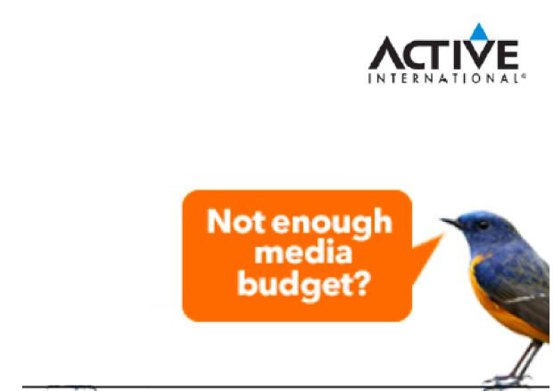 not enough media budget bird.png